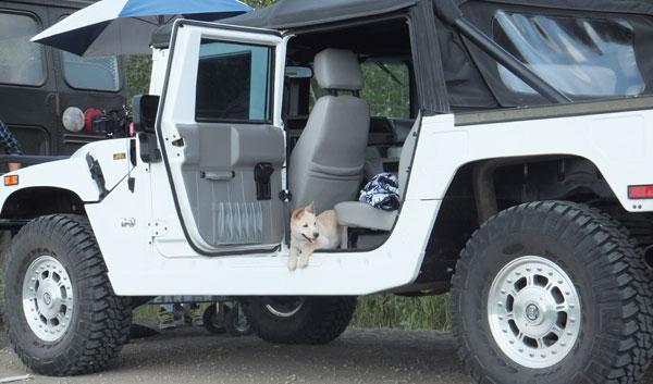 Kiki guarding the Hummer