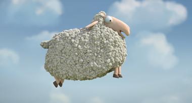 Oh Sheep
